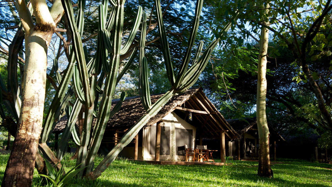 Voyager Ziwani Tented Camp - Kichaka Tours and Travel Kenya